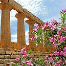 Temple valley Agrigento Sicily Italy by Arie Koene