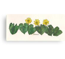 Celandines Canvas Print