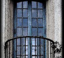 Artistic Window by Karen Harrison