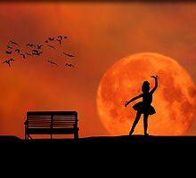 Moonlight Dance by Richard Gaffney