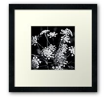 Flower Framed Print