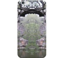 water hole at Maidenwell,Qld. iPhone Case/Skin
