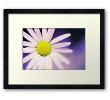 Beautiful flower, beautiful colour Framed Print