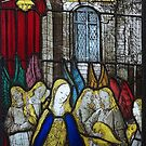 Stained Glass 4, Burrell Collection, Pollokshaws West, Scotland by MagsWilliamson