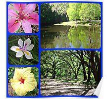 Flowers & Landscapes Poster