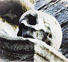 Skull by GraemeHeddle
