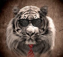 Cool cat! by Richard Eijkenbroek
