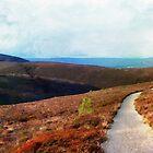 Path Down Cairngorm by GraemeHeddle