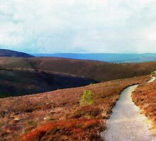 Path Down Cairngorm by GraemeHeddle