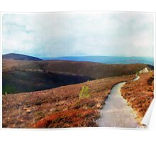 Path Down Cairngorm Poster