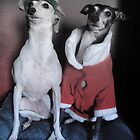 Santa's Italian Greyhound Elves by CWCards2013