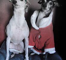 Santa's Italian Greyhound Elves by CWCards2013