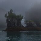 The Mystic Sound by Ken McElroy