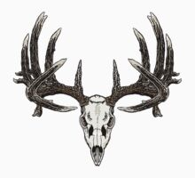 Monster whitetail  by saltypro