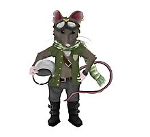 The Mouse Pilot Photographic Print