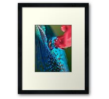Wellspring of Knowledge Framed Print