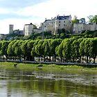 Chateau de Chinon by hans p olsen