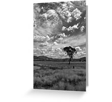 Liverpool Plains Greeting Card