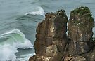 The Wild West Coast _ New Zealand by Barbara Burkhardt