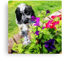 Eli and the Flowers Canvas Print