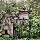Mansion in decay by DCarlier