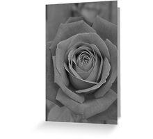 Restful Rose Greeting Card