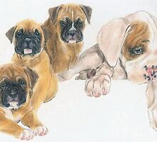 Boxer Puppies by BarbBarcikKeith