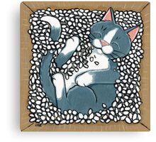 Sleeping Box Canvas Print