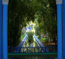 Jardin Marjorelle Marrakech Morocco by Janice Petitjean