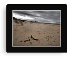 The Dull Seaside Canvas Print