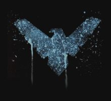 Nightwing Acrylic splatter (logo only) by justin13art