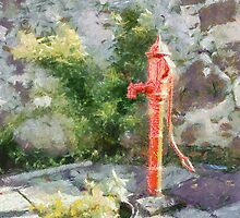 Red water pump, County Carlow, Ireland by buttonpresser
