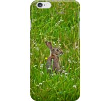 Mr Rabbit Case iPhone Case/Skin