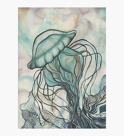 Black Lung Jellyfish Photographic Print