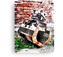 Grabbing Your Attention Metal Print