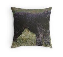 Bouvier Des Flandres Dog Portrait  Throw Pillow