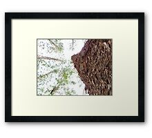 bark bark bark..... Framed Print