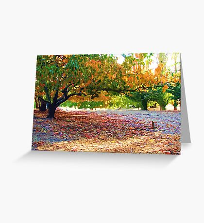 Persimmon Trees - Helen Hume Greeting Card