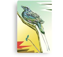 Long tailed blue bird 3 Canvas Print