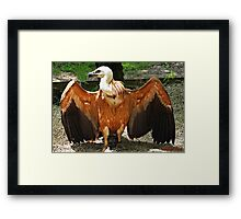 """"""" A Relic from the Dinosaur Period"""" Framed Print"""