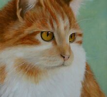Ginger Cat by Catherine Gabriel
