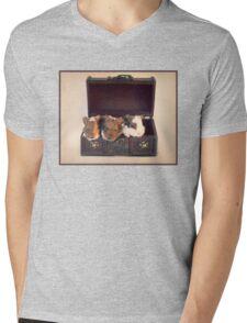 Chest Full Of Treasures Mens V-Neck T-Shirt