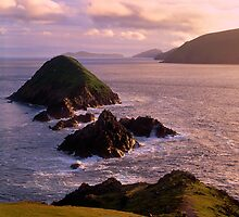The Blasket Islands by Simon Bowen
