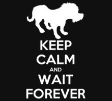 Wait Forever by enoren