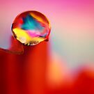 Just a Drop of Water by Sharon Johnstone