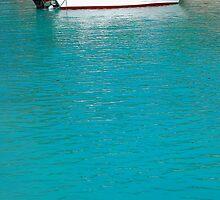 Lone caribbean fishing boat by Rashad Penn
