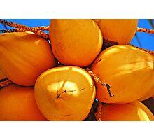 Golden Coconuts bundle Photographic Print