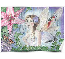 Butterfly Faerie Poster
