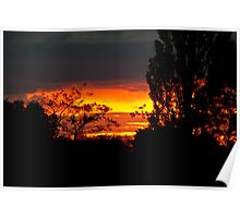 Sun setting behind trees Poster