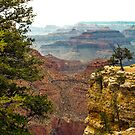 Over the edge/the Grand Canyon by philw